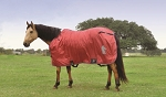 Classic Equine Frost Fighter Stable Horse Blankets