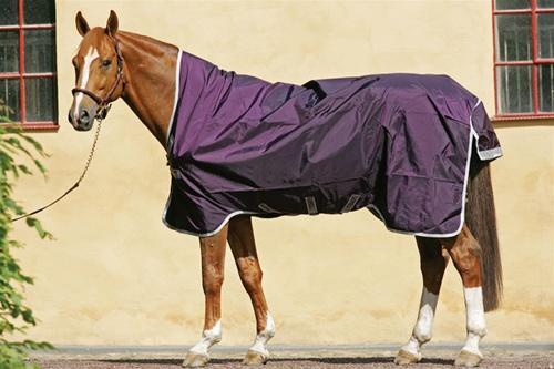 Horse Blankets Lookup Beforebuying