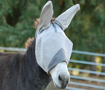 Fly Mask standard with mule ears
