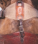 Flank cinch hobble strap by Martin Saddlery