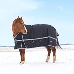 Classic Equine 10K Cross Trainer WaterProof Horse Blankets