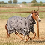 Hooded 5K Cross Trainer Blanket