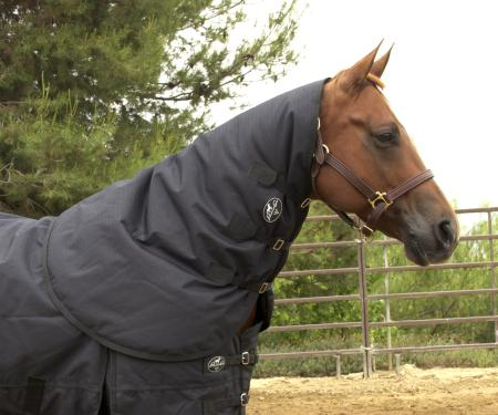 Equisential Neck Cover