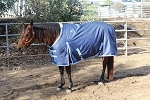 1200D Winter Turnout Blanket