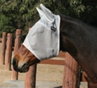 Equisential Fly Mask with Ears