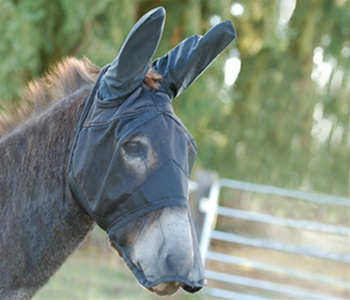 Quite Ride Fly mask long nose with mule ears